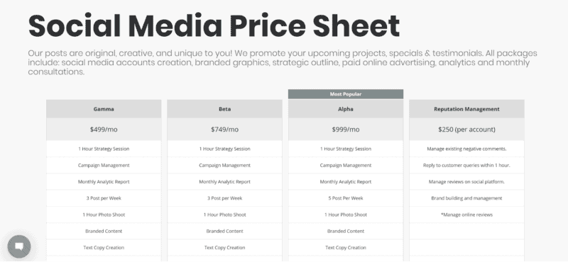 Social Media Managament Charge Cost Price Sheet Example
